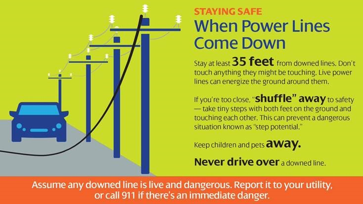 Staying Safe with Downed Power Lines