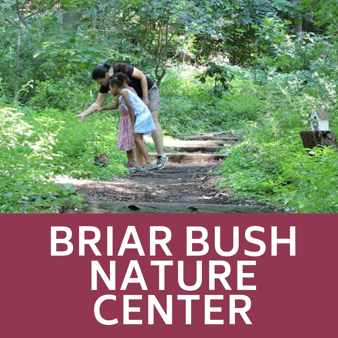 Briar Bush Nature Center Icon that links to Briar Bush Nature Center webpage