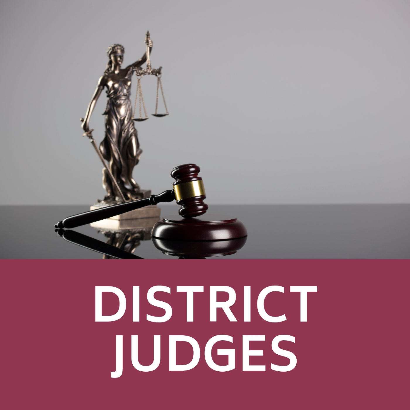 Judge gavel and block and that links to information about District Judges.