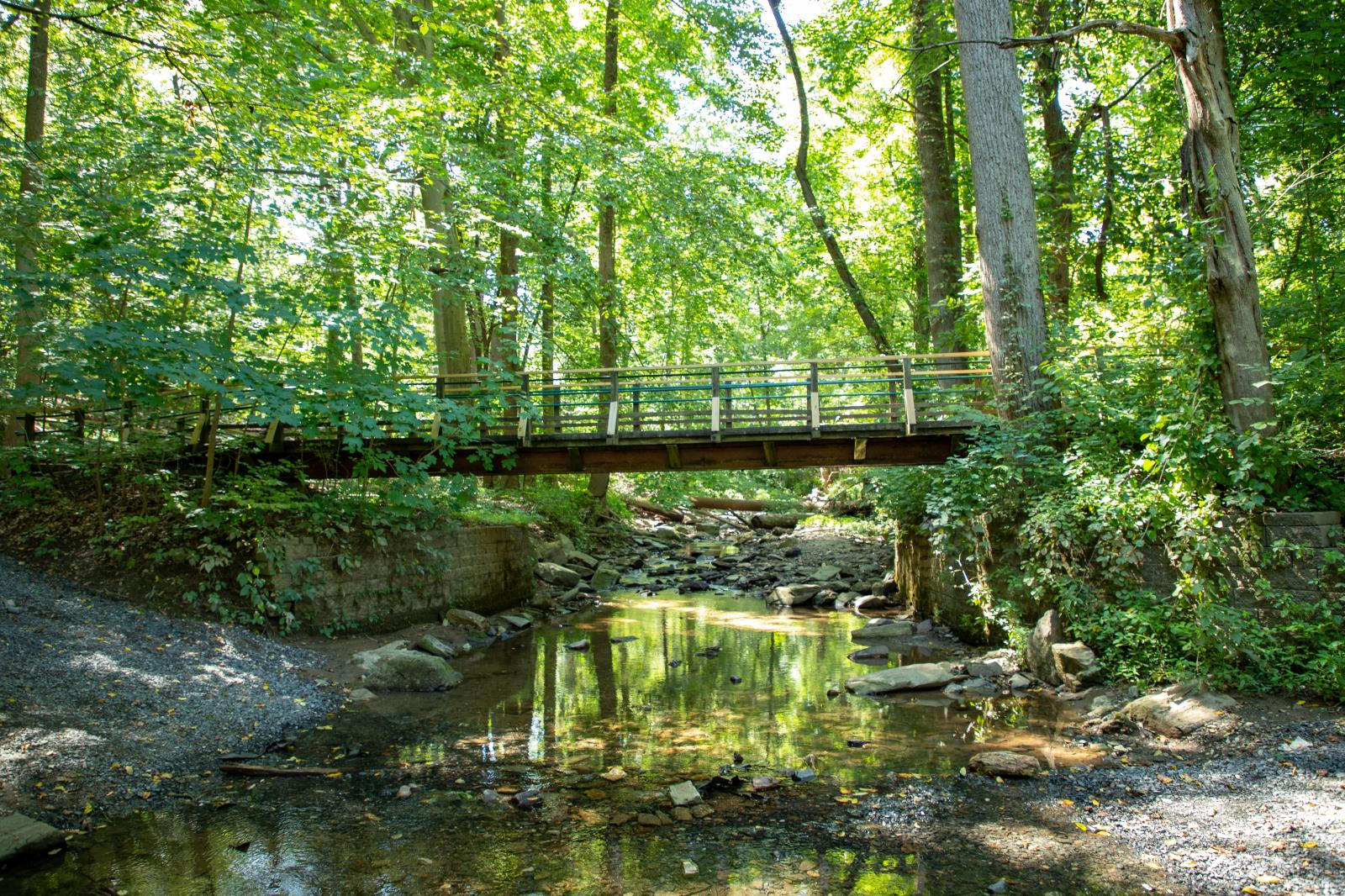 Lorimer Park bridge over creek