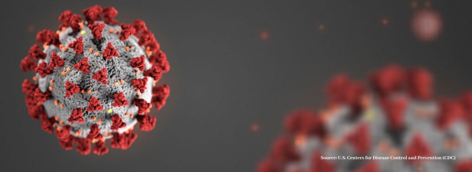 Coronavirus Banner from U.S. Centers for Disease Control